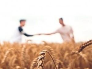 Wheat_handshake_resize